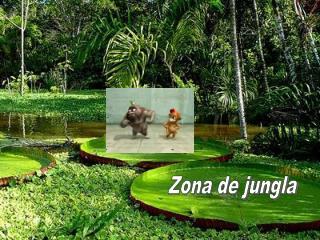 Zona de jungla