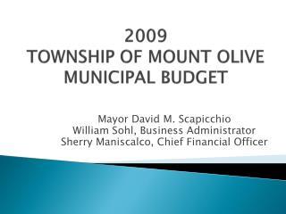2009 TOWNSHIP  OF MOUNT OLIVE MUNICIPAL BUDGET