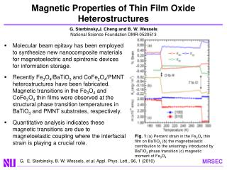 Magnetic Properties of Thin Film Oxide Heterostructures