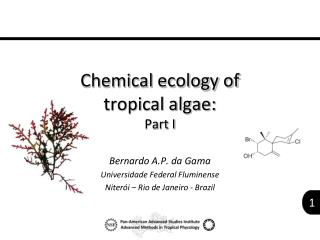 Chemical ecology of  tropical algae: Part I