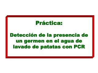 Práctica: Detección de la presencia de un germen en el agua de lavado de patatas con PCR