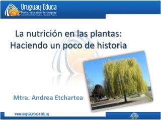 La nutrición en las plantas: Haciendo un poco de historia