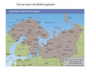 The  coer  areas o  the  BEARf cooperation