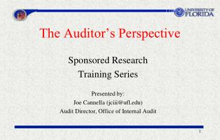 The Auditor�s Perspective