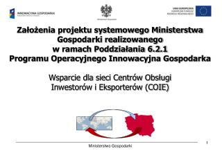 Założenia projektu systemowego Ministerstwa Gospodarki realizowanego  w ramach Poddziałania 6.2.1