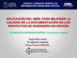 Ángel  Mena  Nieto Dr. Ingeniero Industrial  Director Proyecto INDUSTEL