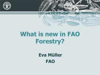 What is new in FAO Forestry?