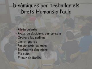 Dinàmiques per treballar els Drets Humans a l'aula