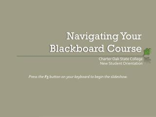 Navigating Your Blackboard Course