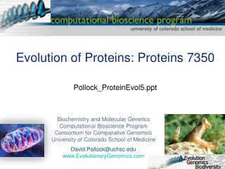 Evolution of Proteins: Proteins 7350 Pollock_ProteinEvol5