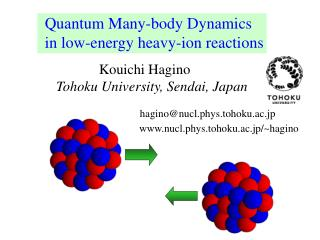 Quantum Many-body Dynamics in low-energy heavy-ion reactions