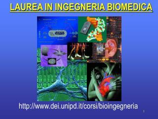 LAUREA IN INGEGNERIA BIOMEDICA