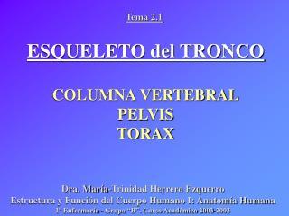 ESQUELETO del TRONCO COLUMNA VERTEBRAL PELVIS TORAX