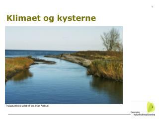 Klimaet og kysterne