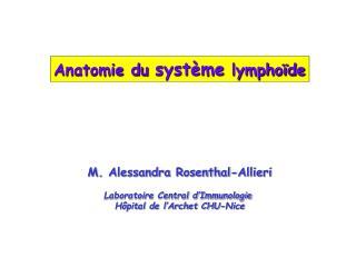 Anatomie du  système  lymphoïde