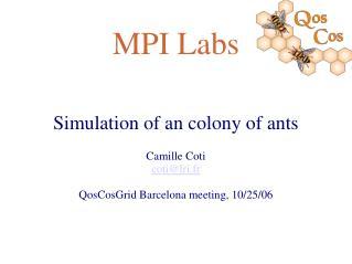 MPI Labs
