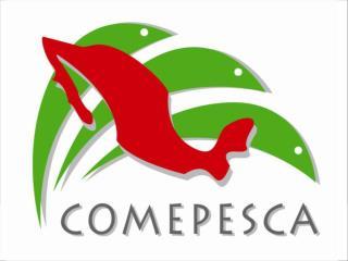 CAMPA�A COMEPESCA 2008