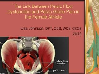 The Link Between Pelvic Floor Dysfunction and Pelvic Girdle Pain in the Female Athlete