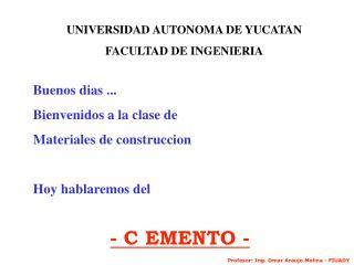 UNIVERSIDAD AUTONOMA DE YUCATAN FACULTAD DE INGENIERIA