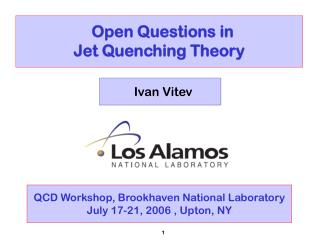 Open Questions in  Jet Quenching Theory
