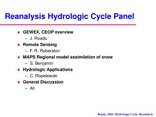 Reanalysis Hydrologic Cycle Panel