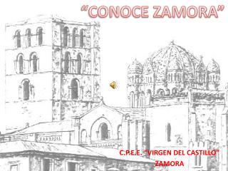 """C.P.E.E. """"VIRGEN DEL CASTILLO"""" ZAMORA"""