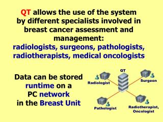 QT allows the use of the system by different specialists involved in breast cancer assessment and management: radiologis