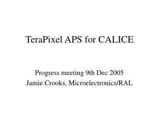 TeraPixel APS for CALICE