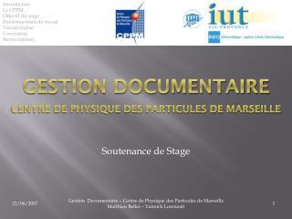 Introduction Le CPPM Objectif du stage Environnement de travail Travail réalisé Conclusion