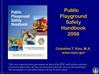Public Playground Safety Handbook 2008