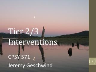 Tier 2/3 Interventions