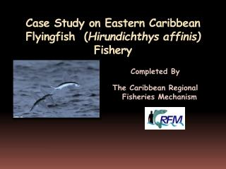 Case Study on Eastern Caribbean Flyingfish  ( Hirundichthys affinis )  Fishery