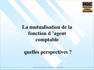 La mutualisation de la fonction d'agent comptable  quelles perspectives ?
