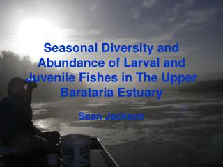 Seasonal Diversity and Abundance of Larval and Juvenile Fishes in The Upper Barataria Estuary