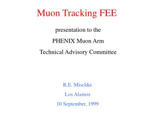 Muon Tracking FEE