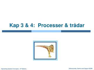 Kap 3 & 4:  Processer & trådar