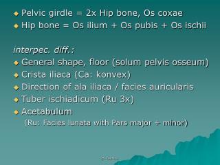 Pelvic girdle = 2x Hip bone, Os coxae Hip bone = Os ilium + Os pubis + Os ischii interpec. diff.: