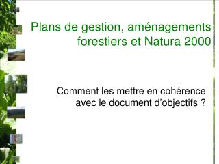 Plans de gestion, aménagements forestiers et Natura 2000