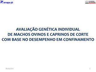 Local da Avaliação: Raça Período de adaptação: Período de avaliação: Raça ou Grupo Genético: