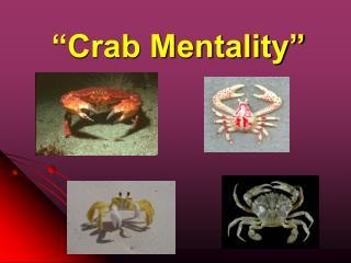 """Crab Mentality"""