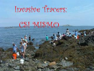 Invasive Tracers:        CSI MISMO