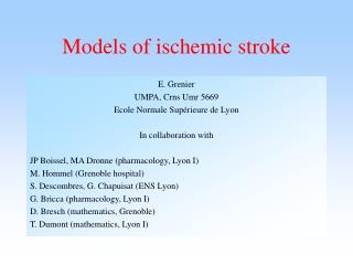Models of ischemic stroke