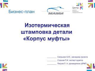 _________   Сапрыкин Б.Ю., менеджер проекта _________   Строков П.И. эксперт-куратор