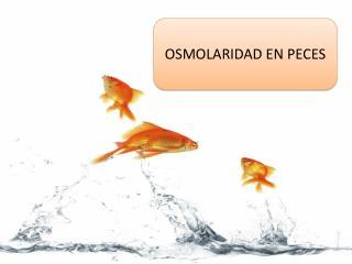OSMOLARIDAD EN PECES