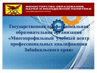 Планируемые виды деятельности Центра  образовательная деятельность;