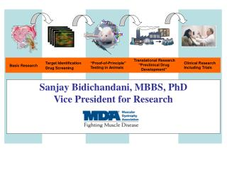 Sanjay Bidichandani, MBBS, PhD Vice President for Research