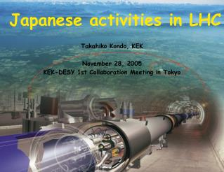 Japanese activities in LHC