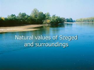 Natural values of Szeged  and surroundings