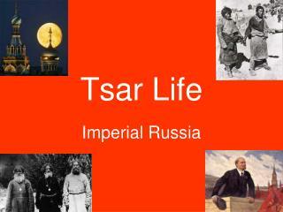 Tsar Life