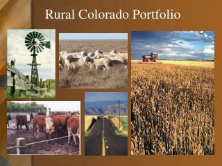 Rural Colorado Portfolio